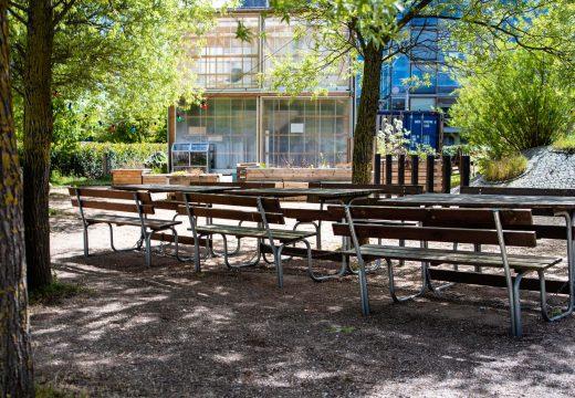 Bænke placeret udenfor under træer på Sigurdsgade 26