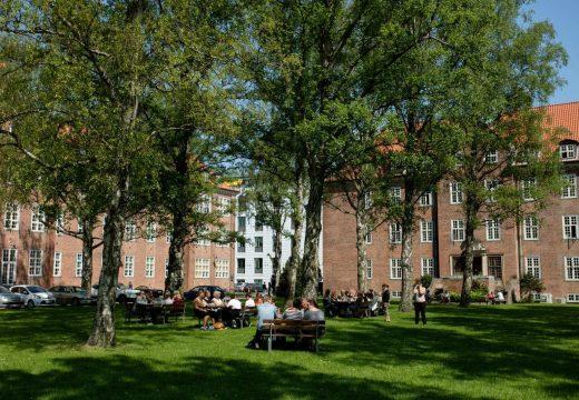 Studerende sidder på bænke udenfor på Tagensvej 18